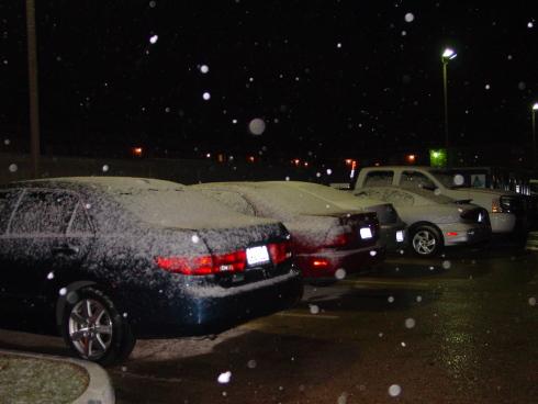 snow_galveston1.JPG