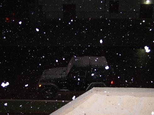 snow_galveston2.JPG